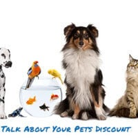 Week of August 14th - Talk About Your Pets