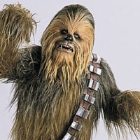 Chewbacca Sounds Discount - Wednesday August 17th